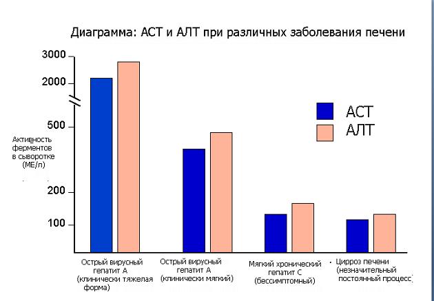 АСТ и АЛТ при заболеваниях печени